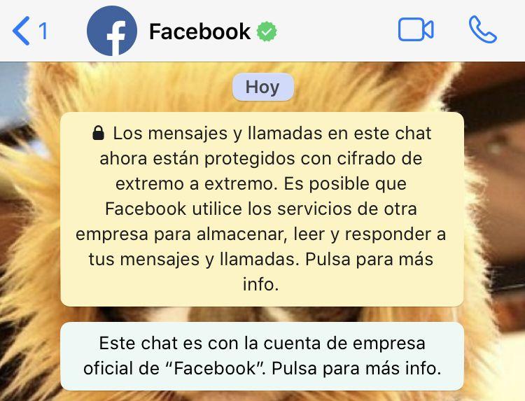 Contactar con Facebook por WhatsApp